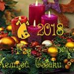 Декоративные композиции на Новый год