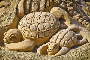 Песчаная фигура черепахи